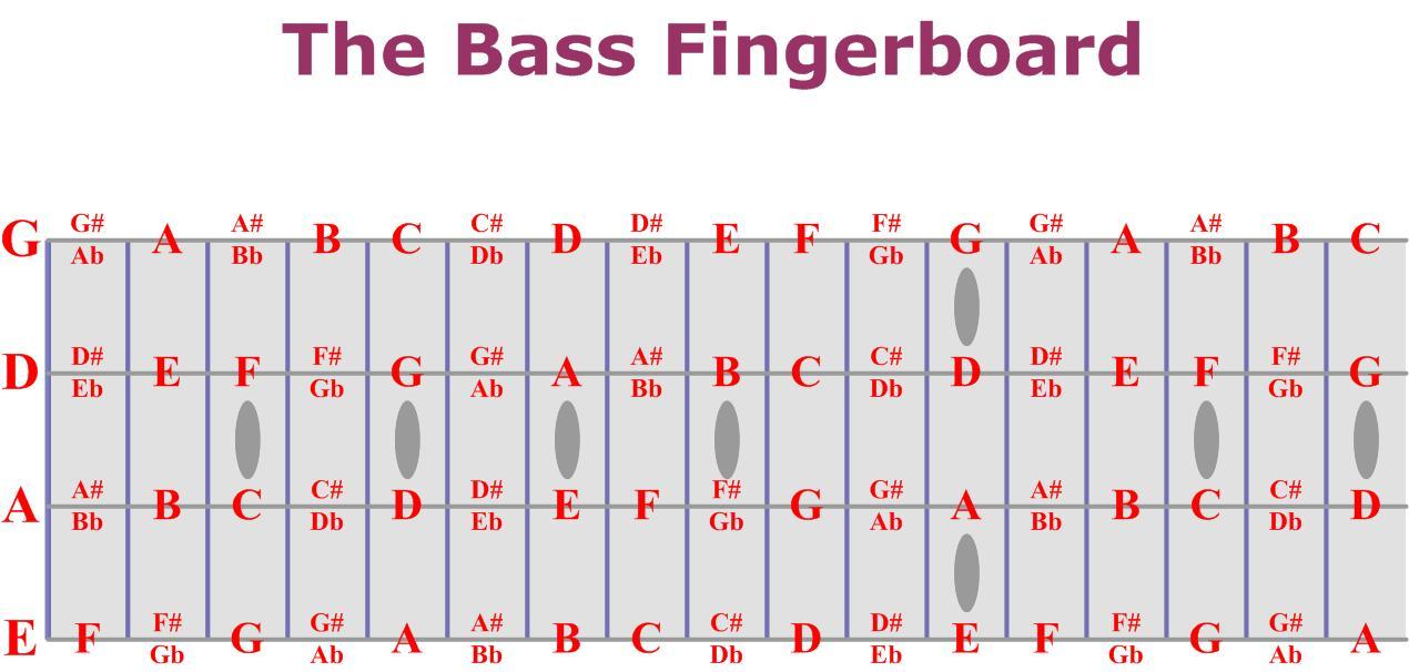 Bass guitar notes chart dolapgnetband bass guitar notes chart ccuart Image collections